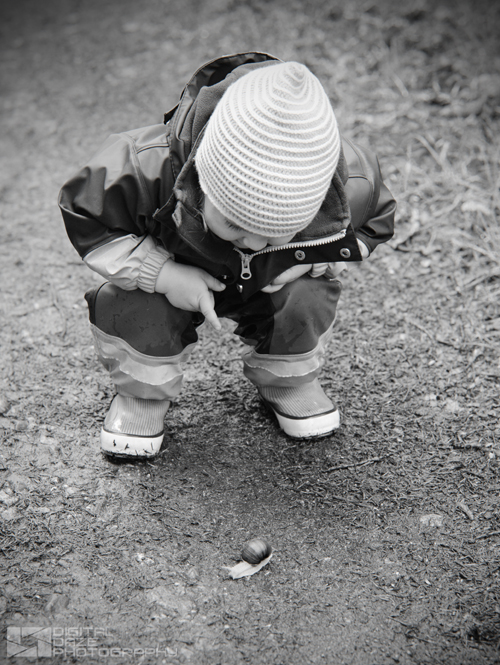 snail hunting - 002