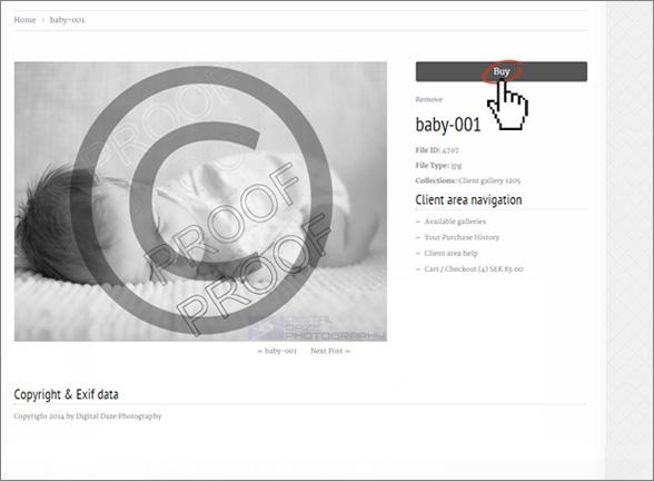 buy-002-